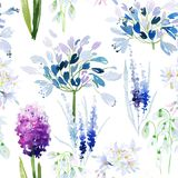 Spring flowers seamless pattern Royalty Free Stock Images