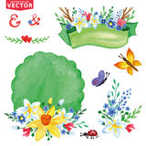 Watercolor Spring flowers bouquet decor set Royalty Free Stock Photos