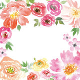 Watercolor spring flowers. Spring flowers. Illustration, vector. Pattern frame. Hand lettering Stock Photo
