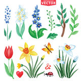 Watercolor Spring flowers set Royalty Free Stock Photo