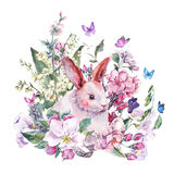 Watercolor spring greeting card white bunny Royalty Free Stock Photos