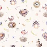 Watercolor spring rustic pattern with nest, birds, branch,tree twigs and feather. Watercolour seamless hand drawn bird. Background. Vintage, boho illustrations Royalty Free Stock Image