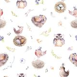 Watercolor spring rustic pattern with nest, birds, branch,tree twigs and feather. Watercolour seamless hand drawn bird. Background. Vintage, boho illustrations Royalty Free Stock Images