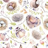 Watercolor spring rustic pattern with nest, birds, branch,tree twigs and feather. Watercolour seamless hand drawn bird. Background. Vintage, boho illustrations Stock Illustration