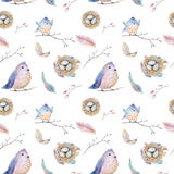 Watercolor  spring  rustic pattern with nest, birds, branch,tree Royalty Free Stock Image