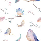 Watercolor  spring  rustic pattern with nest, birds, branch,tree Stock Image
