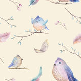 Watercolor  spring  rustic pattern with nest, birds, branch,tree Royalty Free Stock Photo