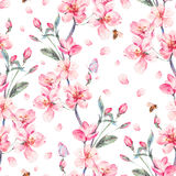 Watercolor spring seamless background with blooming branches Stock Image