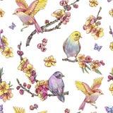 Watercolor spring seamless pattern, vintage floral illustration vector illustration