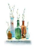 Watercolor spring still life. Watercolor painting. Colorful bottles and spring twigs with buds on white background Royalty Free Stock Photo