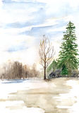 Watercolor spring sunny wood forest flood landscape.  Royalty Free Stock Photos