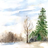 Watercolor spring sunny wood forest flood landscape.  Royalty Free Stock Images