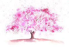 Watercolor spring tree Stock Images