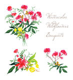Watercolor spring wildflowers vector design set Stock Photos