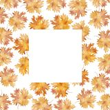 Watercolor square frame colorful autumn maple leaves in a round dance isolated on white background. Flower pattern for beautiful wedding invitation design royalty free illustration