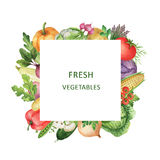Watercolor square frame with fresh vegetables. Royalty Free Stock Photo