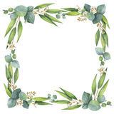 Watercolor square wreath with eucalyptus leaves and branches. Royalty Free Stock Photo