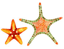 Watercolor starfishes Stock Images