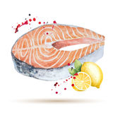 Watercolor steak fish. Stock Photos
