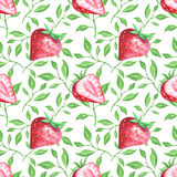 Watercolor strawberries seamless pattern Stock Photography