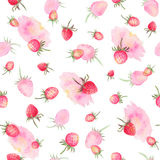 Watercolor strawberries seamless pattern Royalty Free Stock Photography