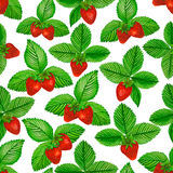 Watercolor strawberry with green leaves on white background. Seamless pattern. Stock Photography