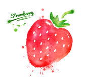 Watercolor strawberry Royalty Free Stock Image