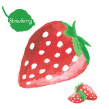 Watercolor strawberry isolated on white background Stock Photos