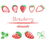 Watercolor strawberry isolated on white background. Watercolor strawberry isolated elements on white background for any design. Vector illustration. Hand drawn Royalty Free Stock Photography