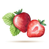 Watercolor strawberry Stock Images