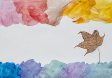 Watercolor strokes and dry maple leaf Royalty Free Stock Images