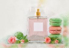 Watercolor style and abstract illustration of vintage perfume bottle and french macaroon cookie. Watercolor style and abstract illustration of vintage perfume royalty free stock image