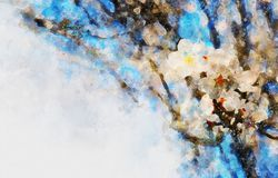 Watercolor style and abstract image of cherry tree flowers. Watercolor style and abstract image of cherry tree flowers stock illustration