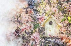 Watercolor style and abstract image of cherry tree flowers and birdhouse. Watercolor style and abstract image of cherry tree flowers and birdhouse Stock Image