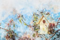 Watercolor style and abstract image of cherry tree flowers and birdhouse. Watercolor style and abstract image of cherry tree flowers and birdhouse Royalty Free Stock Photos