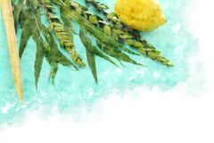 Watercolor style and abstract image of Jewish festival of Sukkot. Traditional symbols The four species: Etrog, lulav, hadas, ara Royalty Free Stock Photography