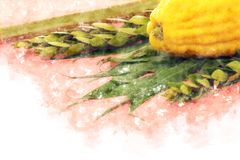 Watercolor style and abstract image of Jewish festival of Sukkot. Traditional symbols The four species: Etrog, lulav, hadas, ara Stock Images