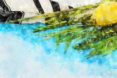 Watercolor style and abstract image of Jewish festival of Sukkot. Traditional symbols The four species: Etrog, lulav, hadas, ara Royalty Free Stock Images