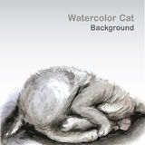 Watercolor style cat - Vector illustration. Royalty Free Stock Photos