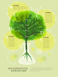 Watercolor style education infographic with tree Royalty Free Stock Image