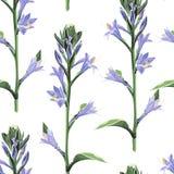 Watercolor style floral pattern, delicate flower wallpaper, violet bells. royalty free illustration