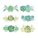 Watercolor Succulent Set Stock Photography
