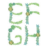 Watercolor succulents letters. Watercolor succulents alphabet. Letters on white Royalty Free Stock Photo