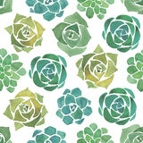 Watercolor succulents seamless pattern Stock Photo