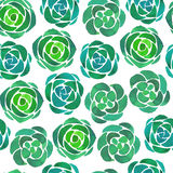 Watercolor succulents seamless pattern. On white background Royalty Free Stock Image
