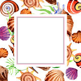 Watercolor summer beach seashell tropical elements frame, underwater creatures. Royalty Free Stock Image