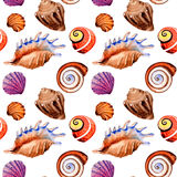 Watercolor summer beach seashell tropical elements pattern, underwater creatures. Royalty Free Stock Photos