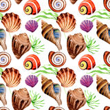 Watercolor summer beach seashell tropical elements pattern, underwater creatures. Stock Photo