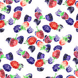 Watercolor  summer blackberry and raspberry pattern. On white background Stock Image