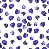 Watercolor  summer blackberry on white background. Watercolor  summer blackberry pattern on white background Royalty Free Stock Images